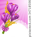 Crocuses 34718506