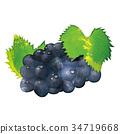 秋之美食 水果 葡萄 34719668