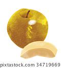 秋之美食 水果 梨 34719669