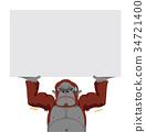 ลิงกอริล่า,ป้ายกลางแจ,สัตว์ 34721400