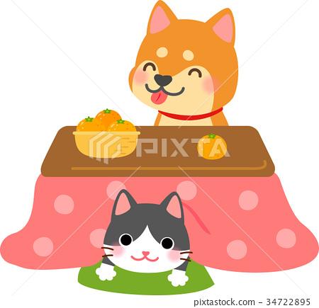 kotatsu, dog, dogs 34722895