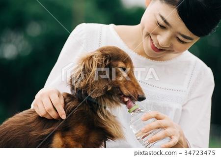 물을 마시는 개와 여자 수분 34723475