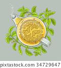 stevia, diet, sugar 34729647