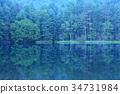ฤดูใบไม้ผลิ,แหล่งน้ำ,สระน้ำ 34731984