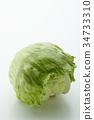 lettuce, lettuces, vegetables 34733310