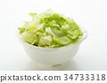 lettuce, lettuces, investigate 34733318