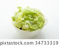 lettuce, lettuces, investigate 34733319