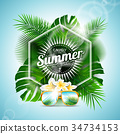 summer, vector, design 34734153