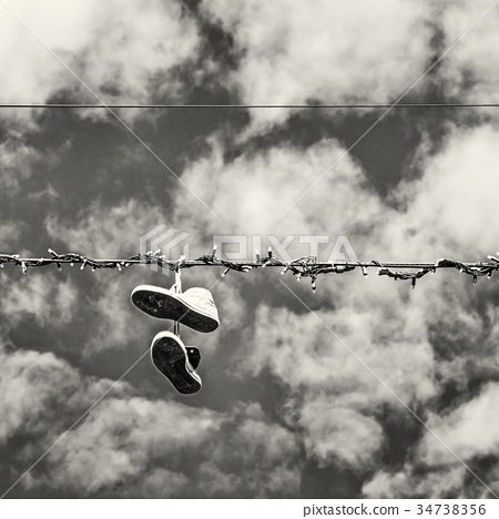 Sneakers on the power line, colorless 34738356
