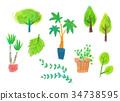 自然 植物 植物学 34738595