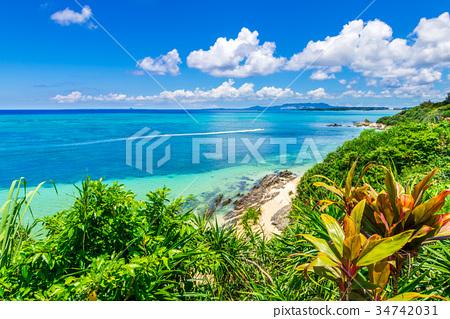 The sea of Okinawa 34742031