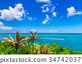 沖繩 琉球 硫球 34742037