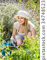 cheerful female planting flowers in yard. 34748523