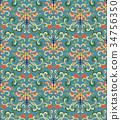 植物學 植物 無縫的 34756350