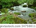 奧入瀨溪流 河 峽谷急流 34756611