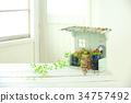 肉质植物 室内装饰 室内设计 34757492