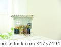 succulent plant, interior, interiors 34757494