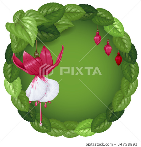 Wreath with flowers and leaves 34758893