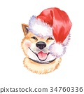 cute, illustration, watercolor 34760336