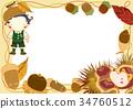 橡果 板栗 日本栗 34760512