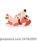 動物 寵物 毛孩 34762095