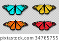 蝴蝶 向量 向量圖 34765755
