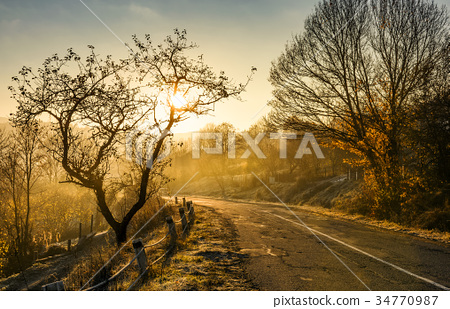 country road in morning fog 34770987