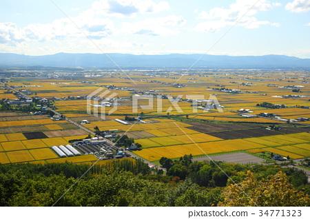 View of Hokkaido Rice Field Higashikawa Town 34771323