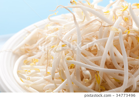 Bean sprouts 34773496