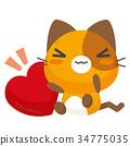 猫 猫咪 小猫 34775035