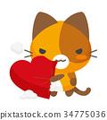 猫 猫咪 小猫 34775036