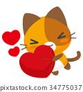 猫 猫咪 小猫 34775037