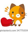 猫 猫咪 小猫 34775039