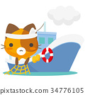 貓 貓咪 毛孩 34776105