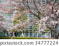 東京 港區 國家藝術中心 34777224