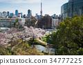 東京鐵塔 春天 春 34777225
