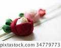 คาเมลเลีย,ดอกไม้,พื้นหลังสีขาว 34779773