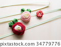 คาเมลเลีย,ดอกไม้,พื้นหลังสีขาว 34779776