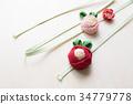 คาเมลเลีย,ดอกไม้,พื้นหลังสีขาว 34779778