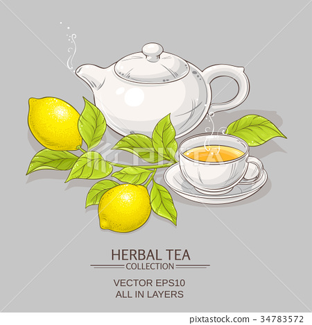 lemon tea vector illustration 34783572