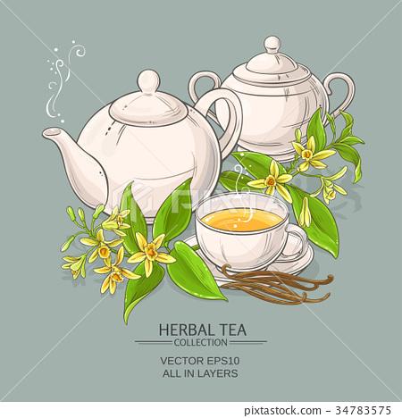 vanilla tea illustration 34783575