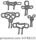 Set of sailing knots hand drawn 34788225