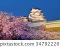 히메지 성, 벚꽃, 성 34792220
