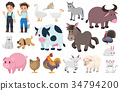 Farmer and farm animal, Vector graphic elements. 34794200