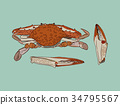 Vector vintage crab drawing. 34795567