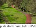 promenade, river bed, running 34800059