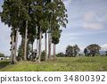 风景 城堡废墟 城堡 34800392