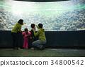 어린이,화진포해양박물관,고성군,강원도 34800542