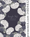 floral, flower, hydrangea 34804832