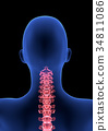 cervical Spine Pain. Blue Human Anatomy Body 3D 34811086